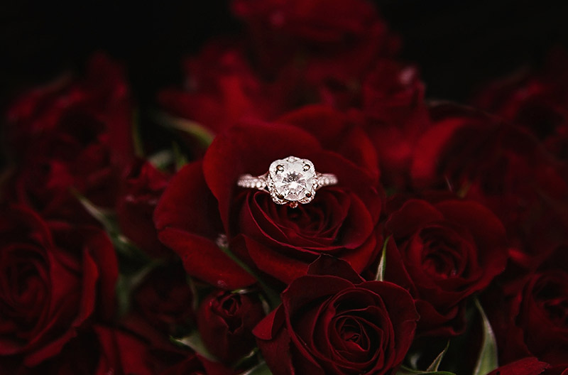 engagement ring, howell manor, wedding planning blog, congratulations, celebration